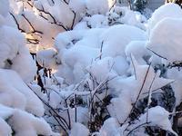 雪かきって大変 - Zen おりおりの記