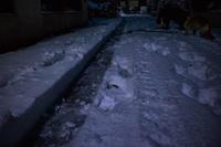 雪 - モモラテ日記♪2