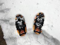 雪が積もってスノーシュー散歩 - 北軽1130