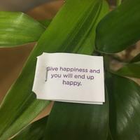 国際結婚国内結婚 - lei's nihongkong message