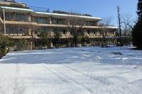 4年ぶりの雪 - ブログ