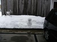 雪!でもでもほっこりPrt.2 - comfortable DAYs
