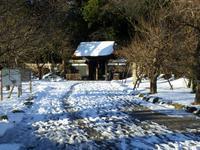 雪の偕楽園2018 - みとぶら