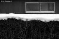 雪のあと - 写真と私