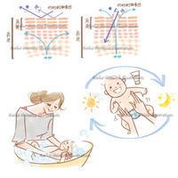 「ゼクシィBaby」ママと赤ちゃん、肌断面イラスト - 女性誌を中心に活動するイラストレーター清水利江子の仕事ブログ