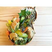 鶏胸肉とシャキシャキ野菜のオイスター中華炒めBENTO - Feeling Cuisine.com