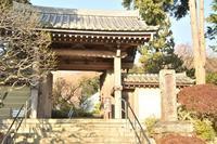 鎌倉、観光(三十三観音☆彡) - 僕の足跡