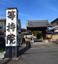 太平記を歩く。その202「等持院」京都市北区 - 坂の上のサインボード