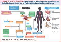 末梢動脈疾患における抗凝固療法11か条:ACCのまとめサイトから - 心房細動な日々
