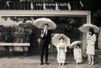 かわいいかたまりの - from自由が丘 ベビー・キッズ・マタニティ・家族の出張撮影、say photography