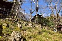 嵯峨野散策愛宕念仏寺 - 高原に行きたい