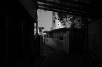 大聖堂~三重県・大王崎灯台~partⅡ - 拙者の写真修行小屋