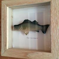 魚の方の !! - 十勝 Trout Carving Gallery II