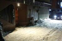 氷点下の夜 - 山猫を探す人Ⅱ