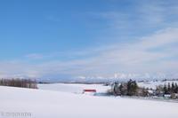 雪景色の中の赤い屋根~1月の美瑛 - My favorite ~Diary 3~