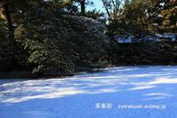 京都御所参観12冬 - 写楽彩