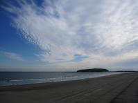 宮崎トレッキングの旅1(青島) - 花の自由旋律