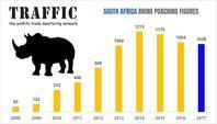2017年の南アフリカのサイの密猟数統計 - 親愛なる犀たちへ