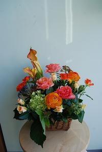 御供、法事、御祝、ギフト、様々なアレンジメント - 花と暮らす店 木花 Mocca