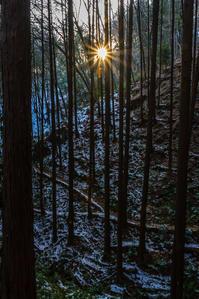 夕暮の日和田山へ - デジカメ写真集
