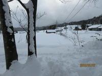 森の入り口の素敵な雪 - 宮迫の! ようこそヤマボウシの森へ