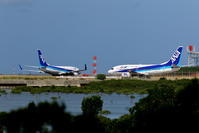 ANAのB737 - 南の島の飛行機日記