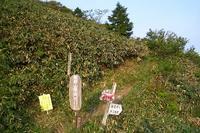 恵那山神坂コース登山記録(2008,6,14) - ポンタ爺さんの山日記