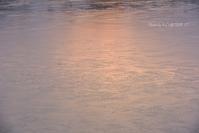 早い冬朝@ 水上池 - 東大寺が大好き