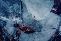 氷写真とレトロパッケージの生姜糖 - 糸巻きパレットガーデン