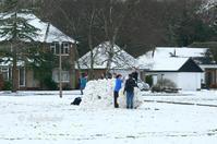つかの間の雪景色 - どんぐりの秘密のガーデン
