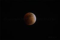 space 001 - 身近な自然探訪