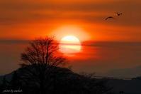 みちのく夕陽情景2 - みちのくの大自然