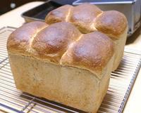 やっぱり山食 - ~あこパン日記~さあパンを焼きましょう