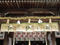 孫と神社 - 清治の花便り