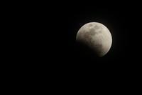 初めての皆既月食の写真撮影 - 平凡な日々の中で