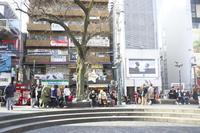 「冬の三角公園」 - hal@kyoto