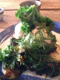 ブリストルのカフェ久々に心こもった美味しいものに、刺激されました - イギリス ウェールズの自然なくらし