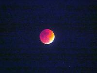 トリプルレアな皆既月食を撮る・・・スーパーブルーブラッドムーン‼♪(^_-)-☆ - 『私のデジタル写真眼』