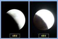 皆既月食**** 2018/02/01(木) **** - きんちゃんの眼
