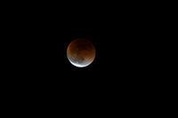 月食、です。 - Taro's Photo