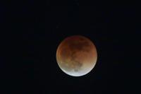 今夜(1/31)の天体ショー・皆既月食 - 素人写人 雑草フォト爺のブログ