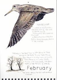 2月 -目に見えて日が長くなりはじめます- ハナさんのカレンダー - ブルーベルの森-ブログ-英国のハンドメイド陶器と雑貨の通販