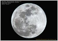 皆既月食三つの特月が重なった - 野鳥の素顔 <野鳥と日々の出来事>