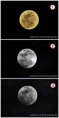皆既月食 - eekoの自己満足(1)