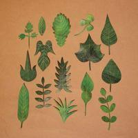紙上葉っぱ採集 - 手製本クリエイター&切り絵コラージュ作家yukai の暮らしを愉しむヒント