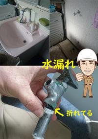 脱衣所がびしょびしょ - 西村電気商会|東近江市|元気に電気!