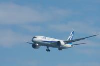 HND - 313 - fun time (飛行機と空)