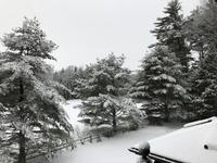 Maine's Winter Scenes - ファルマウスミー