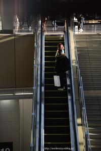 escalator - Noriko's Photo  -light & shadow-