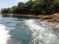 Miyakubo Seto tide experience|宮窪瀬戸 潮流体験 - 旅年譜  Chronological Record of Junya Nakai's travel